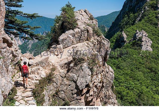 Female hiker walking along a ridge at Seoraksan National park, Gangwon, South Korea - Stock Image