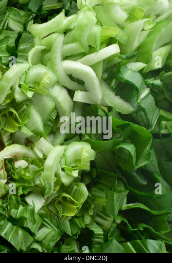 Close up of chopped bok choy - Stock Image