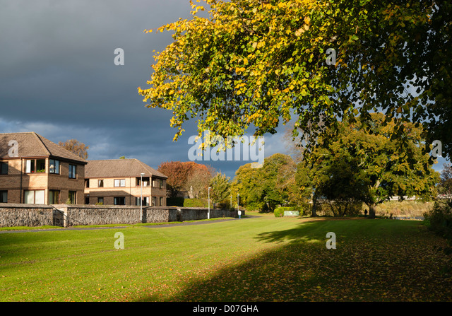 Autumn in the Scottish Borders UK - Mayfield section of Tweed river in Kelso. Riverside meadows which flood when - Stock Image