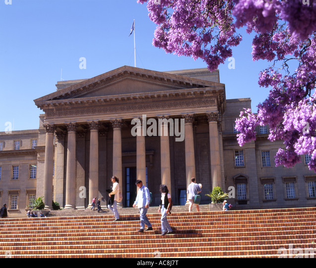 Front Foyer University : Jacaranda johannesburg stock photos
