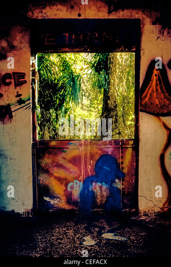 an old room with graffiti and a window into a wild jungle of palm trees - Stock-Bilder