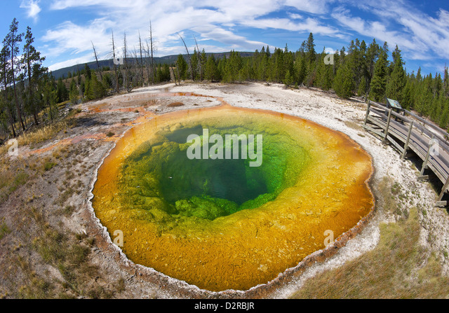 Morning Glory Pool, Upper Geyser Basin, Yellowstone National Park, Wyoming, USA - Stock Image