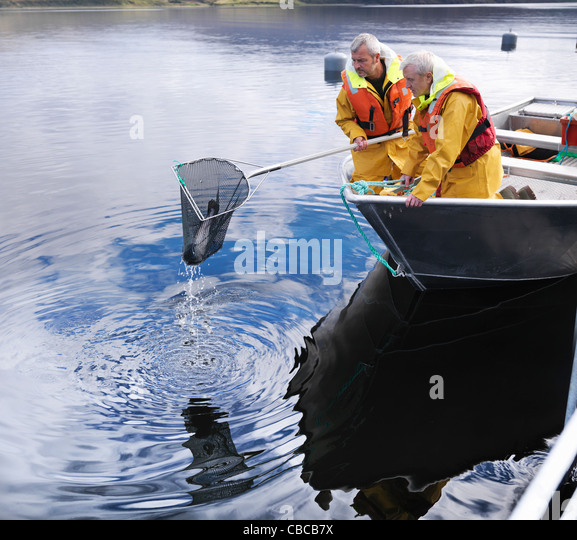 Fishermen using net in still lake - Stock Image
