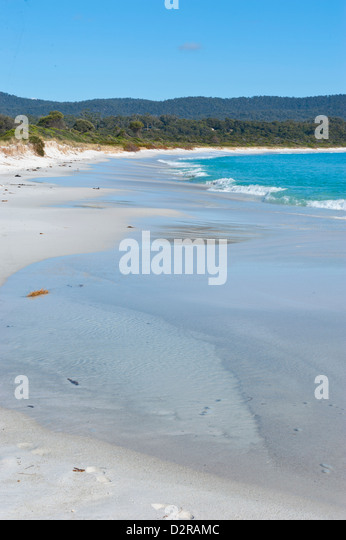 Bay of Fire, voted one of the most beautiful beaches in the world, Tasmania, Australia, Pacific - Stock Image