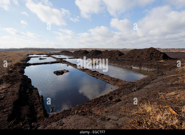 Peat digging area, bog, ready for renaturation, Großes Moor Nature Reserve, Lower Saxony, Germany - Stock Image