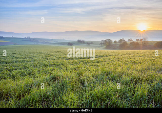 Countryside on Misty Morning at Sunrise, Monchberg, Spessart, Bavaria, Germany - Stock Image