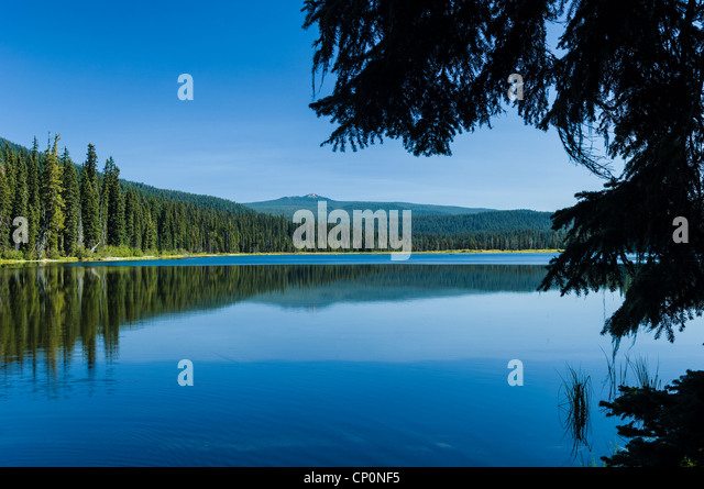 Charlton Lake, Deschutes National Forest, Cascade Mountains, Oregon. - Stock Image
