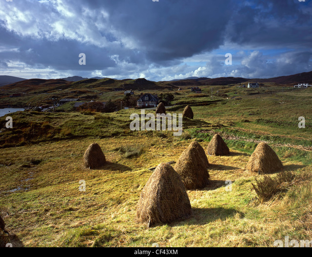 View over traditional hand built haystacks in a field towards the remote village of Tarbert on the Isle of Harris. - Stock-Bilder