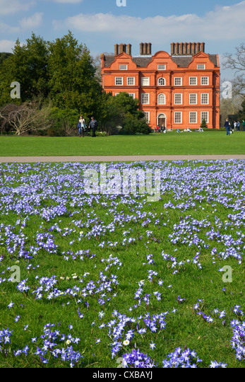 Glory of the Snow flowers in lawns near Kew Palace in spring, Royal Botanic Gardens, Kew, UNESCO World Heritage - Stock Image