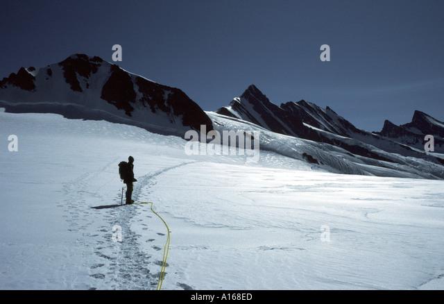 The Walcherhorn and Fiescherhorn, Bernese Oberland, Switzerland - Stock Image