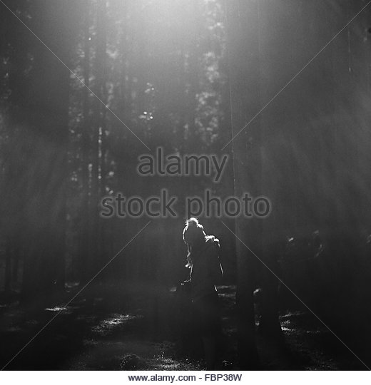 Woman In Forest - Stock Image