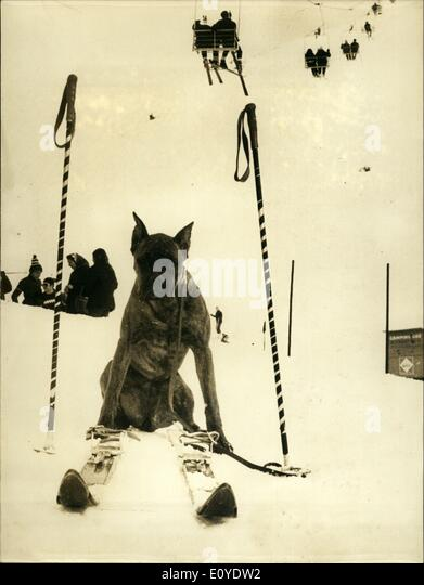 Jan. 01, 1970 - Watching his master's ski equipment: This ski equipment left in the snow by a skier aay for - Stock Image