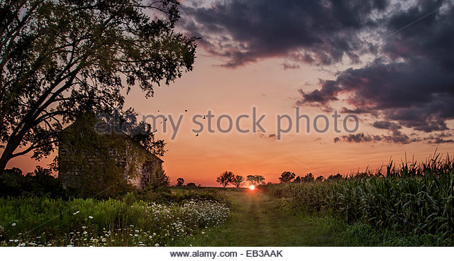 Sunset over abandoned farmhouse in field, Monmouth, New Jersey, America, USA - Stock Image