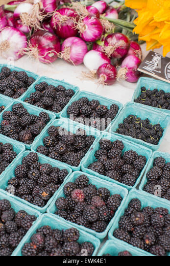 Mulberries and other seasonal berries, red onions and squash blossoms at Sebastopol farmer's market, Sonoma - Stock Image