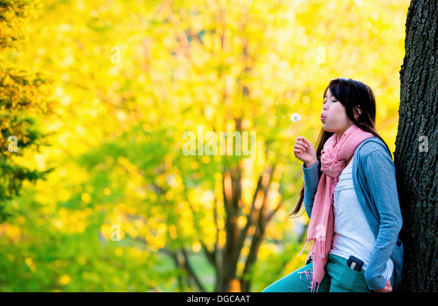 Young female blowing dandelion clock in park - Stock Image
