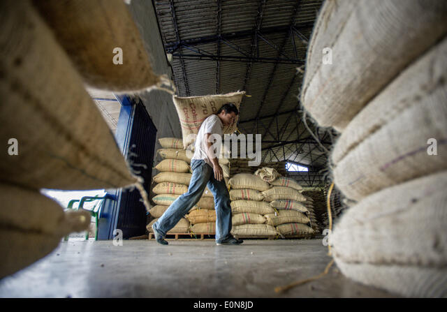 Jardin, Department Antioquia, Colombia. 21st Mar, 2014. March, 21, 2014 - Coffee beans from local farmers are carried - Stock Image