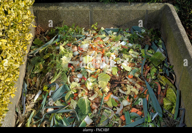 Can You Compost Shredded Paper?