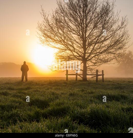 United Kingdom, England, Berkshire, Man watching sunrise - Stock Image