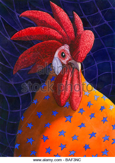 Rooster - Stock Image