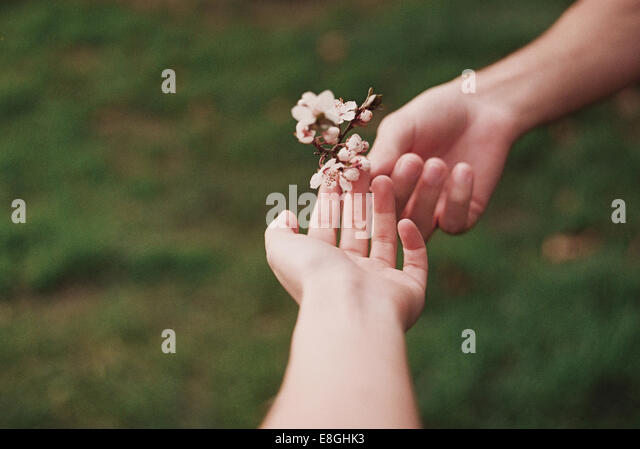 Two people sharing flower - Stock Image