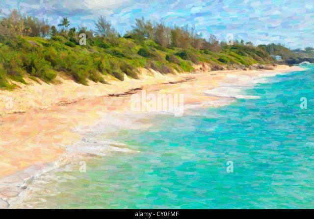 The long expanse of Warwick Long Bay Beach, Bermuda - Stock Image