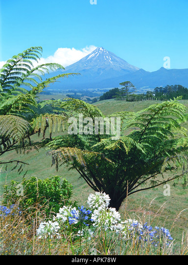 Mount Taranaki/Egmont, New Zealand - Stock Image