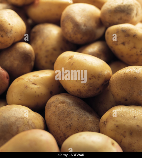 A pile of organic whole raw potatoes editorial food - Stock Image