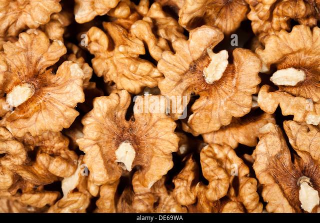 walnut closeup half open background - Stock Image