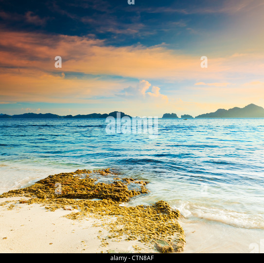 Beautiful seascape. Seaweed on the foreground. Philippines - Stock Image