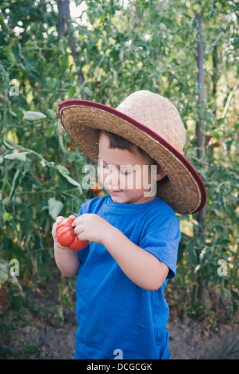 Cute little boy holding tomato - Stock Image