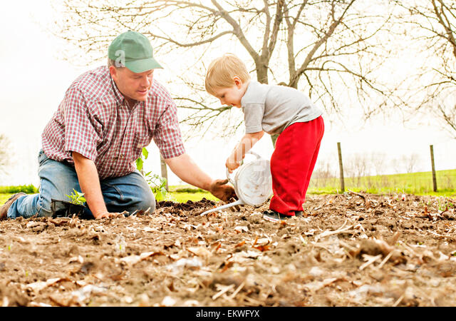 Dad teaching son to garden - Stock Image