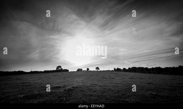 Rural landscape from field with distant trees - Stock-Bilder