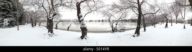 Panorama of Washington DCs famous cherry blossom trees on the banks of the Tidal Basin covered in fresh snow as - Stock Image