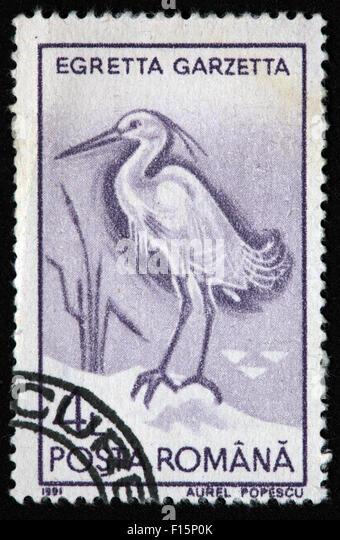 1991 Posta Romana Egretta Garzetta Egret Aurel Popescu Stamp - Stock Image
