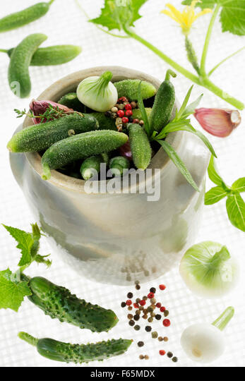 Jar of gherkins with herbs - Stock Image