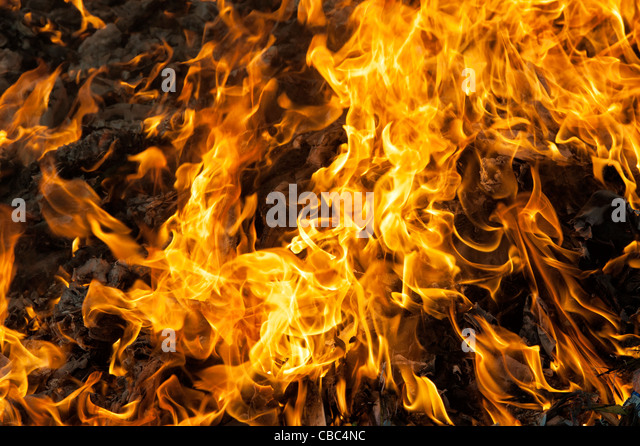 Burning household waste in the indian countryside. Andhra Pradesh, India - Stock Image