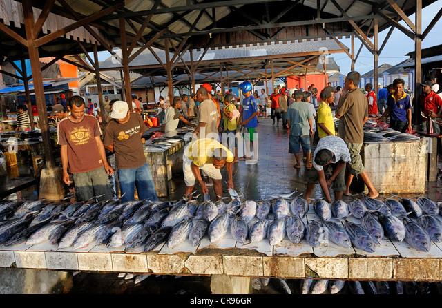 Fish sales at the fish market, Kota Biak, Biak Island, Irian Jaya, Indonesia, Southeast Asia, Asia - Stock Image