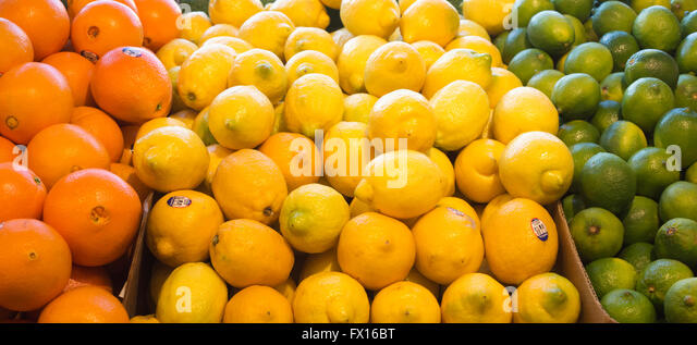 brazil lemons and limes market The 2013 import and export market for fresh or dried lemons and limes in brazil: amazones: icon group international: libros en idiomas extranjeros.
