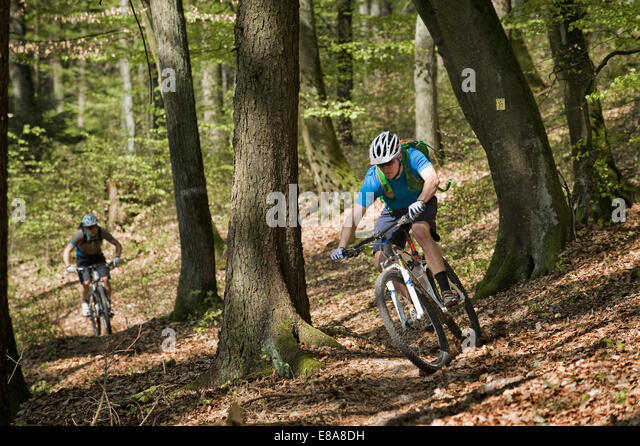 Young men mountainbiking in forest, Bavaria, Germany - Stock Image