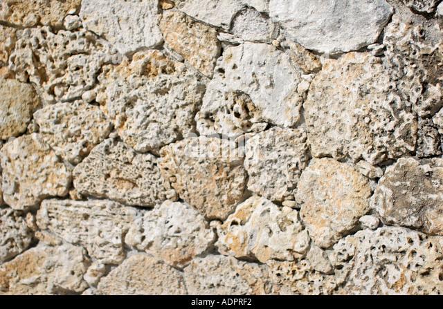 Florida, coral rock wall, oolite, - Stock Image