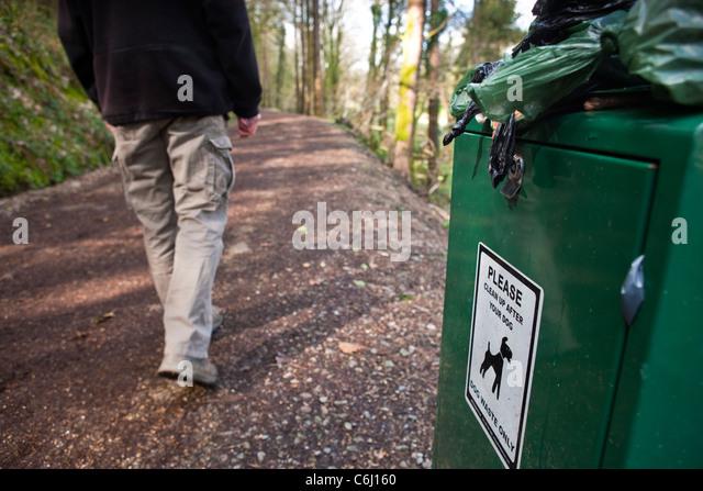 Overflowing Dog waste bin on footpath walker on path - Stock Image