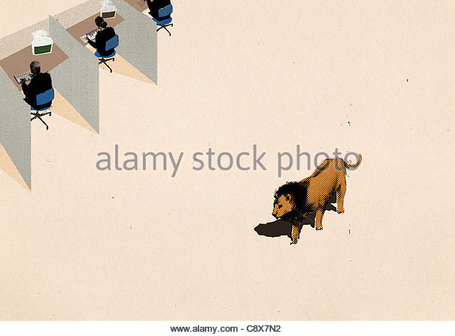 Lion walking past office cubicles - Stock Image