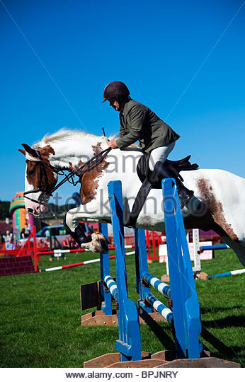 Show jumping competition at Lea Show, Herefordshire, UK. Woman riding a piebald horse jumping a fence side view. - Stock Image
