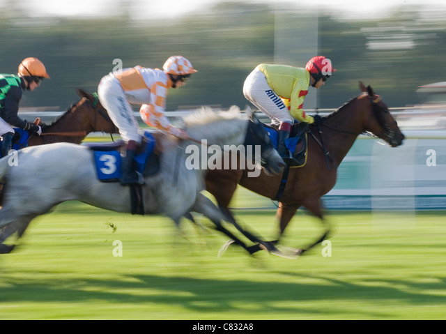 Horse racing Group of horses racing UK - Stock Image
