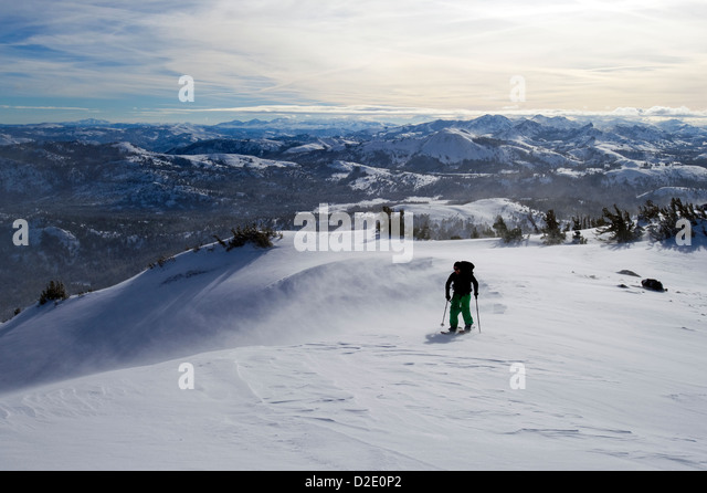 A snowboarder on a splitboard skins up Red Lake Peak in high winds near Lake Tahoe, CA. - Stock Image