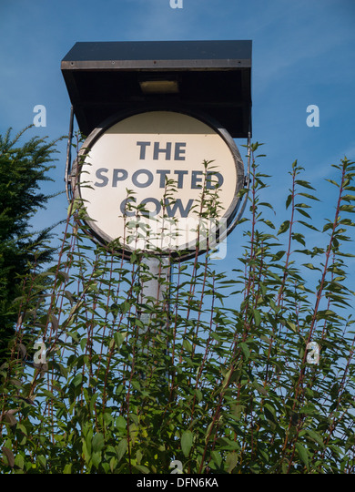 A pub sign for the The Spotted Cow pub in Holbrook, Derbyshire, United Kingdom, UK - Stock Image