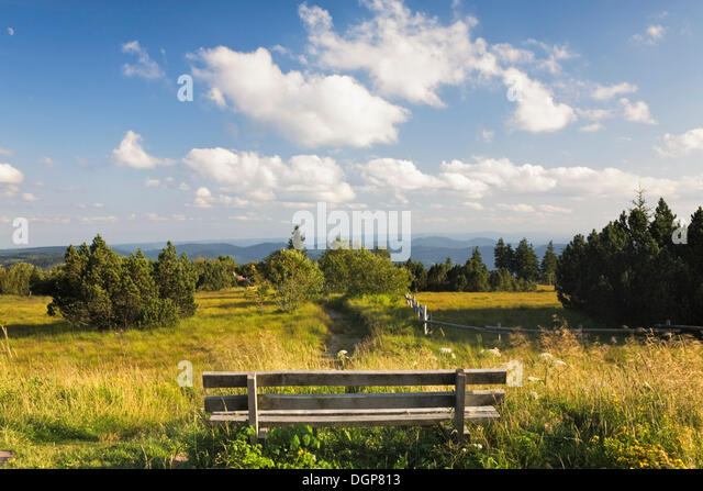 Lookout point on Schliffkopf mountain in the Black Forest, Baden-Wuerttemberg - Stock Image