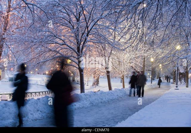 Tourists in a public park, Boston Common, Boston, Massachusetts, USA - Stock Image