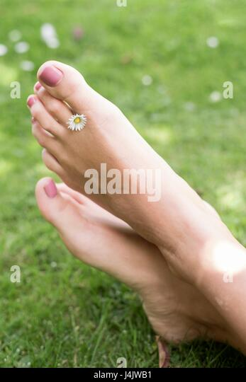 MODEL RELEASED. Young woman on grass with daisy between toes. - Stock-Bilder
