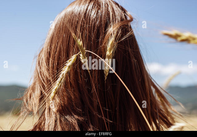 Rear view of young woman's head with ear of wheat - Stock-Bilder
